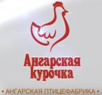 Ангарская ПФ