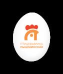 Пышминская ПФ