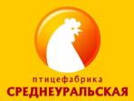 Среднеуральская ПФ